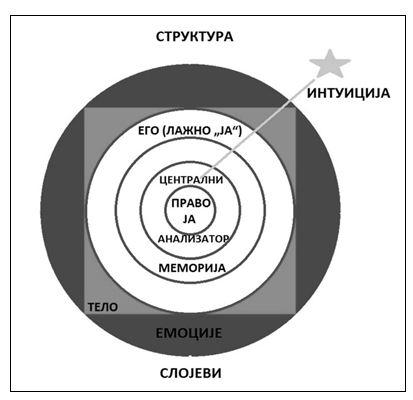 struktura odluke